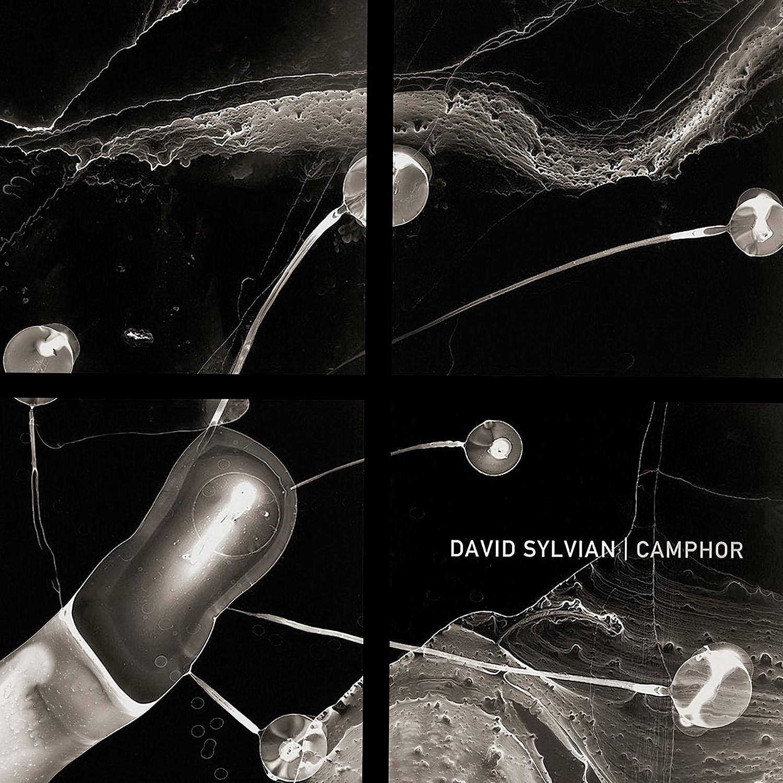 David Sylvian - Camphor