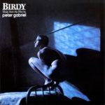 "<span class=""title"">Peter Gabriel – Birdy</span>"
